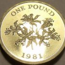 Rare Gem Cameo Proof Guernsey 1981 Pound~10k Minted~Guernsey Lily~Free Ship~