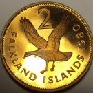 Large Rare Cameo Proof Falkland Islands 1980 2 Pence~Upland Goose~10k Minted~F/S