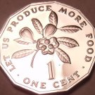 Rare Proof Jamaica 1976 F.A.O. Issue Cent~Only 24,000 Minted~Fantastic~Free Ship