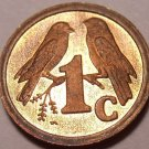 Rare Proof South Africa 1993 Cent~Sparrows~Only 7,790 Minted~Free Shipping