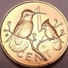 Rare Gem Unc British Virgin Islands 1973 Cent~Hummingbird~20,000 Made~Free Ship