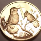 Cameo Proof British Virgin Islands 1973 Cent~1st Year~Hummingbird~Free Shipping