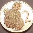 Cameo Proof Cook Islands 1975 2 Cents~Pineapple~Only 21,000 Minted~Free Shipping