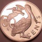 Huge Proof British Virgin Islands 1984 50 Cents~Brown Pelican~Free Shipping