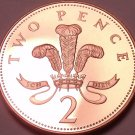 Rare Proof Great Britain 2005 2 Pence~Only 50,000 Minted~Welsh Plume~Free Ship