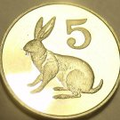 Rare Gem Cameo Proof Zimbabwe 1980 5 Cents~Only 15,000 Minted~Hare~1st Year~Fr/S