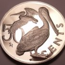 Cameo Proof British Virgin Island 1973 50 Cents~1st Year~Brown Pelican~Free Ship