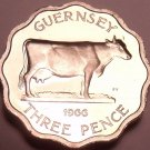 Rare Proof Guernsey 1966 3-Pence~Only 10,000 Minted~Guernsey Cow~Free Shipping