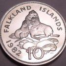 Large Rare Proof Falkland Islands 1982 10 Pence~Ursine Seal~Only 5k Minted~Fr/Sh