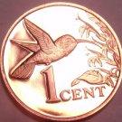 Rare Proof Trinidad & Tobago 1977 Cent~Only 5,337 Minted~Hummingbird~Free Ship