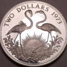 Silver Proof Bahamas 1973 2 Dollars~Only 50k Minted~Flamingos~Free Shipping