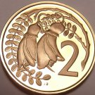 Rare Cameo Proof New Zealand 1976 2 Cents~11,000 Minted~Kowhai Leaves~Free Ship