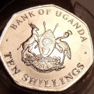 Gem Unc Roll (20) Large Uganda 1987 10 Shillings Coin~Only Year Ever Minted~Fr/S