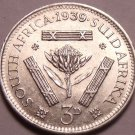 Unc Silver South Africa 1939 3 Pence~Protea Flower~Free Shipping