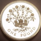 Rare Proof Great Britain 1991 Pound~10,000 Minted~DECUS ET TUTAMEN~Free Shipping