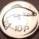 Rare Proof Ireland 1971 10 Pence~Only 50,000 Minted~Salmon~Free Shipping