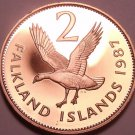 Rare Cameo Proof Falkland Islands 1987 2 Pence~Only 2,500 Minted~Upland Goose~FS