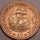 Large Gem Unc South Africa 1960 Penny~Last Year Ever Made~Dromedaris~Free Ship