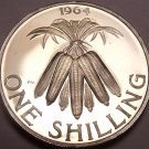 Rare Proof Malawi 1964 Shilling~10,000 Minted~Bundled Corncobs~1st Year~Free Shi