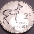 Rare Proof Zambia 1964 2 Shillings~Only 5,000 Minted~Bohor Reedbuck~Free Ship