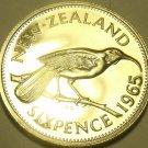 Rare Proof New Zealand 1965 6 Pence~Hula Bird~25,000 Minted~Free Shipping