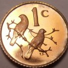 Rare South Africa 1969 Proof Cent~12,000 Minted~Sparrows~Free Shipping