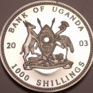 Silver Proof Uganda 2003 1,000 Shillings~Gorillas Of Africa~Seated~Free Shipping