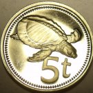 Cameo Proof Papua New Guinea 1975 5 Toea~Plateless Turtle~Free Shipping