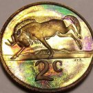 Rare Rainbow Toned South Africa 1985 2 Cents~Wildebeest~9,859 Minted~Free Ship