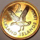 Rare Proof Falkland Islands 1974 2 Pence~Upland Goose~Only 23,000 Minted~