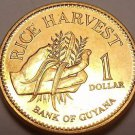 Gem Unc Guyana 1996 Dollar~Only Year Minted~Rice Harvest~Free Shipping