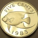 Rare Proof Bermuda 1983 5 Cents~Queen Angel Fish~6,474 Minted~~Free Shipping