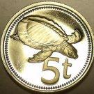 Proof Papua New Guinea 1975 5 Toea~Plateless Turtle~67,000 Minted~Free Shipping