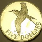 Rare Silver Proof British Virgin Islands 1981 $5.00~Royal Tern~1,124 Minted~Fr/S
