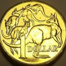 Gem Unc Australia 2006 Dollar~Mob Of Kangaroo's~Beautiful~Free Shipping