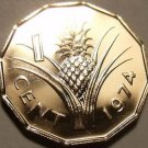 Rare Proof Swaziland 1974 Cent~Pineapple~Only 13,000 Minted~Free Shipping