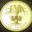 Great Britain 1985 Pound Proof~102,000 Minted~Welsh Leek~Edge Incription~Free Sh