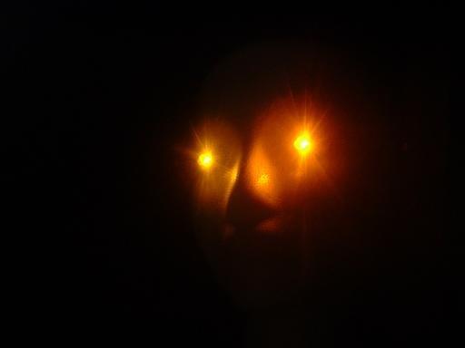 AC (Plugin) Powered LEDs ORANGE spooky Halloween LED Eyes