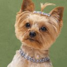 Bling Pooch Necklace