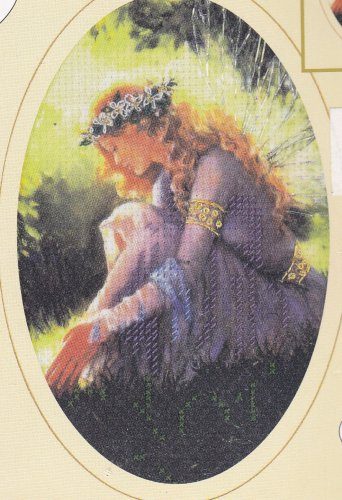 Fairy Garden of Dreams 5124 Candamar Designs Embellished No-Count Cross Stitch Kit 5x7 inches