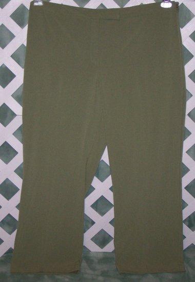 Womens Emma James Sage Color Dress Pants Size 24W