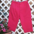 Womens Bright Pink Mountain Lake Capri Pants 10 P BTS
