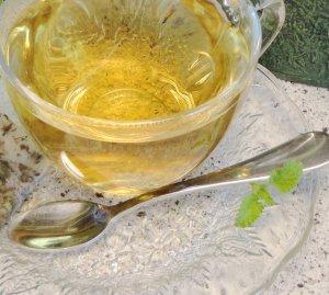Natural LEMON BALM Herbal Tea ( Melissa officinalis ) - 10 tea bags ~gemsandstems.info~