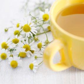 Natural CHAMOMILE Herbal Tea ( Matricaria recutita ) - 10 tea bags ~gemsandstems.info~