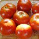 EARLY ANNIE Tomato ( Solanum lycopersicum ) - 15 seeds  ~gemsandstems.info~