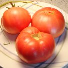 Heirloom PINK BRANDYWINE Tomato ( Solanum lycopersicum ) - 15 seeds  ~gemsandstems.info~