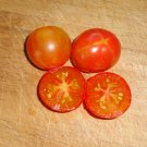 ISIS CANDY Tomato ( Solanum lycopersicum ) - 15 seeds  ~gemsandstems.info~