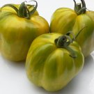 Artisan GREEN BELL PEPPER Tomato ( Solanum lycopersicum ) - 15 seeds  ~gemsandstems.info~