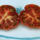 Heirloom RED STAR Tomato ( Solanum lycopersicum ) - 15 seeds  ~gemsandstems.info~