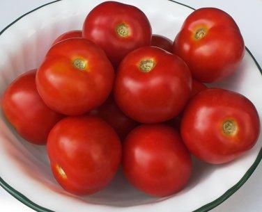 Artisan TATJANA Tomato ( Solanum  ) - 15 seeds  ~gemsandstems.info~